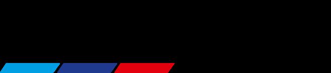 riller-schnauck-logo
